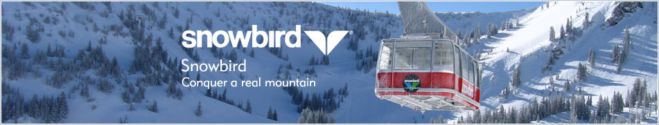 Snowbird resort