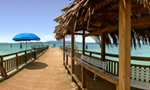 Where you're staying: El Conquistador Resort & Golden Door Spa