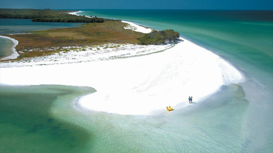 Clearwater Beach Vacation Packages Find Cheap Vacations