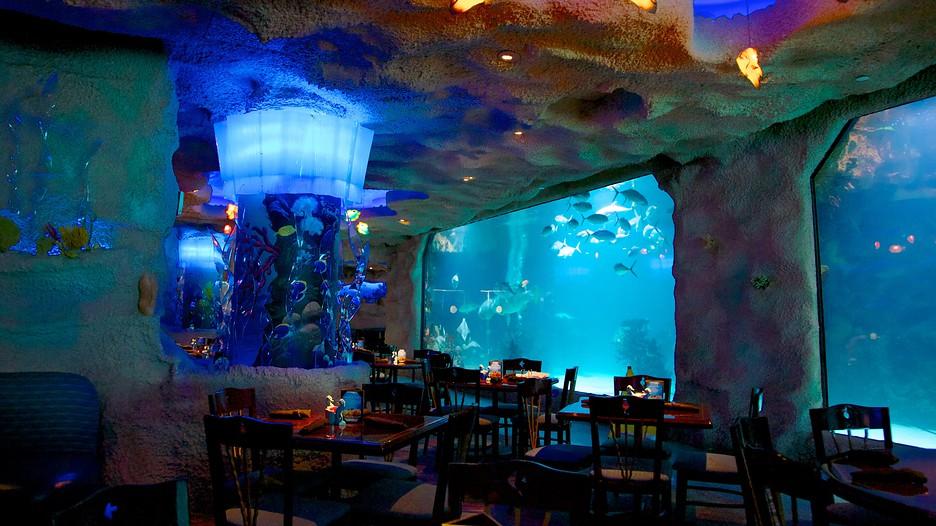 Downtown Aquarium In Houston Texas Expedia