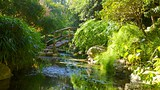 Zilker Botanical Garden - Austin - Tourism Media