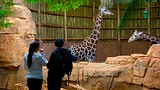 Lincoln Park Zoo - Chicago - Tourism Media