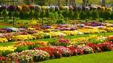Dallas Arboretum and Botanical Garden - Dallas - Tourism Media