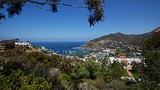 Catalina Island - Tourism Media