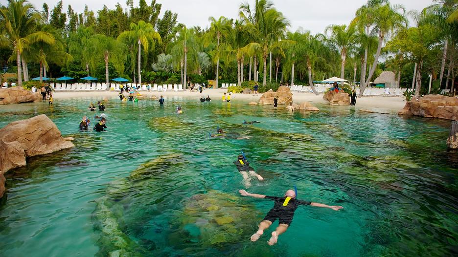 Orlando Usa Tourism Media