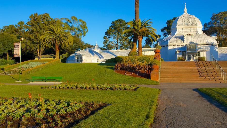 Golden Gate Park San Francisco California Attraction