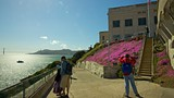Alcatraz Island - Tourism Media