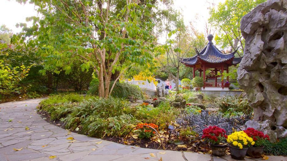 Jardim Botânico e Arvoredo do Missouri - St. Louis - Tourism Media