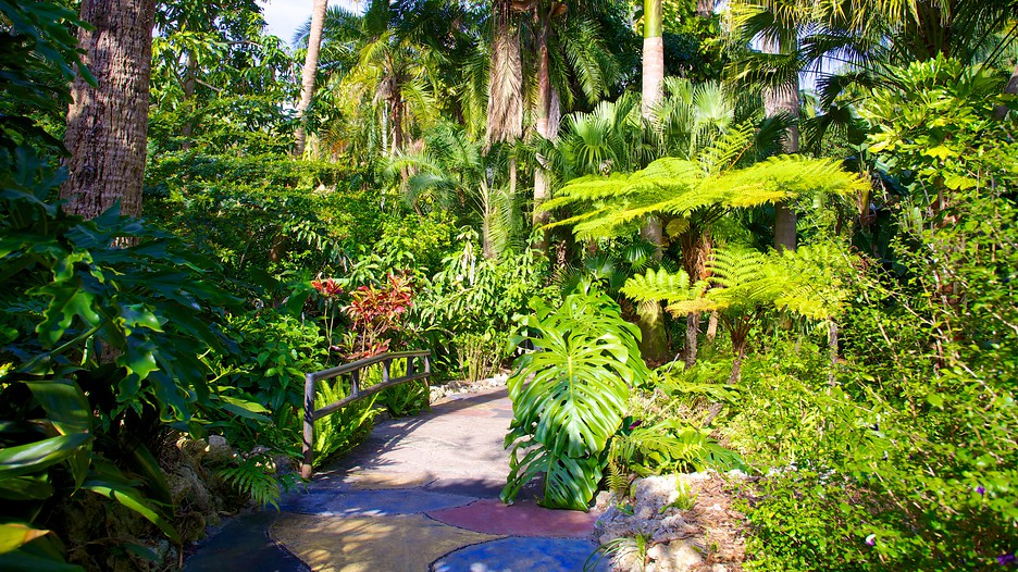 Sunken Gardens In St Petersburg Clearwater Florida Expedia