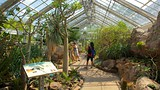 Botanical Gardens - Tourism Media