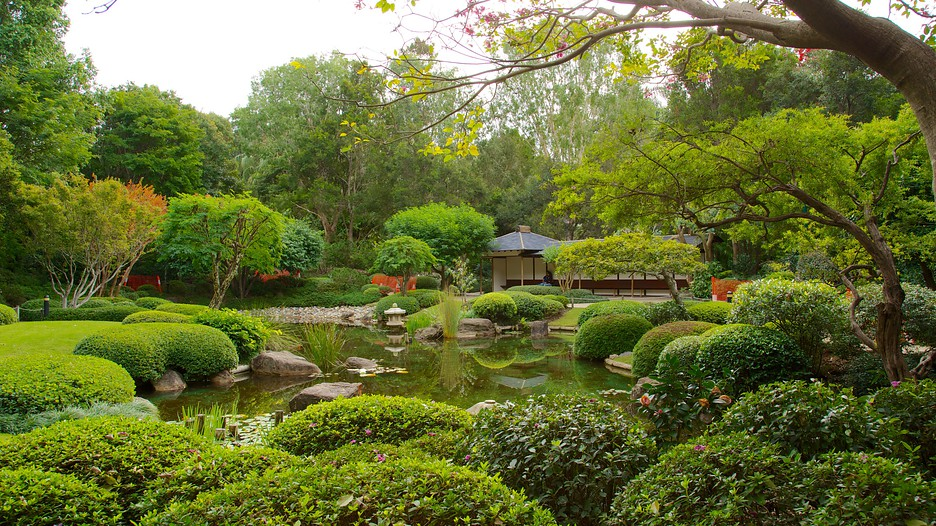 Jardim Botânico de Brisbane - Brisbane - Tourism Media