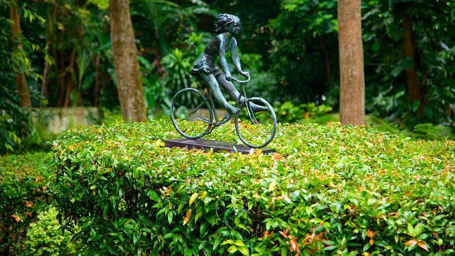 シンガポール植物園の画像 p1_35