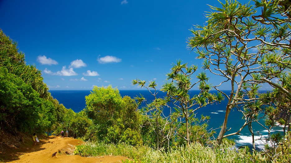 Hawaii Big Island Vacation Packages Book Cheap Vacations
