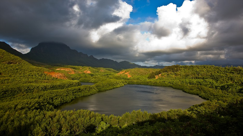 Kauai Island Vacation Packages: Book Cheap Vacations ...