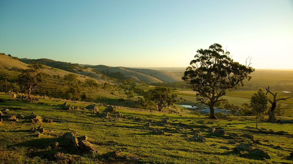 Barossa Valley Australia  city photos gallery : Barossa Valley Holidays: Find Cheap Barossa Valley Holiday Packages ...