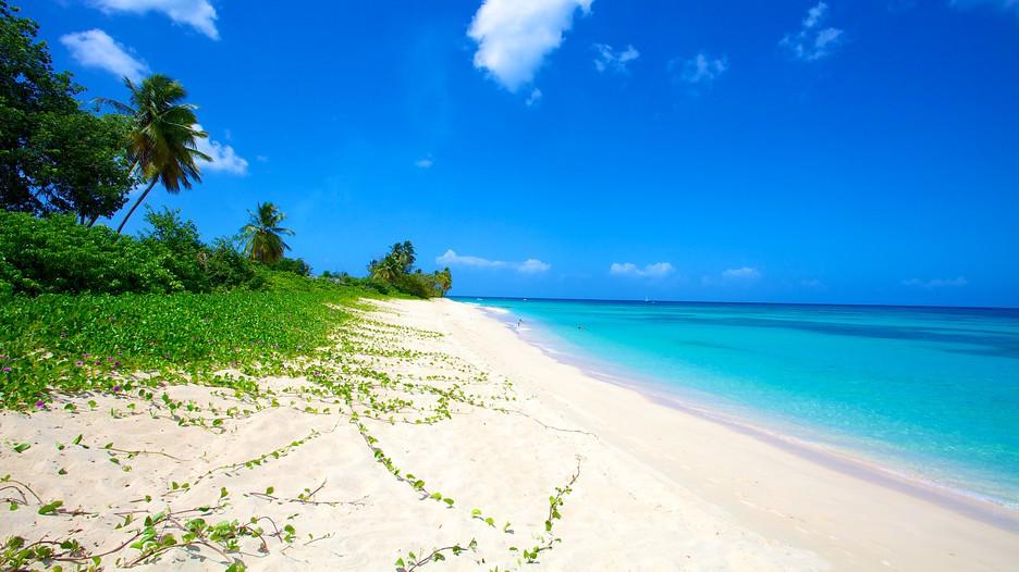 beach paradise beaches - photo #49
