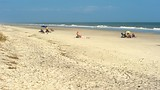 Huntington Beach State Park - Myrtle Beach - Tourism Media