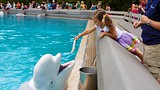 Marineland - Niagara Falls - Marineland of Canada Inc.
