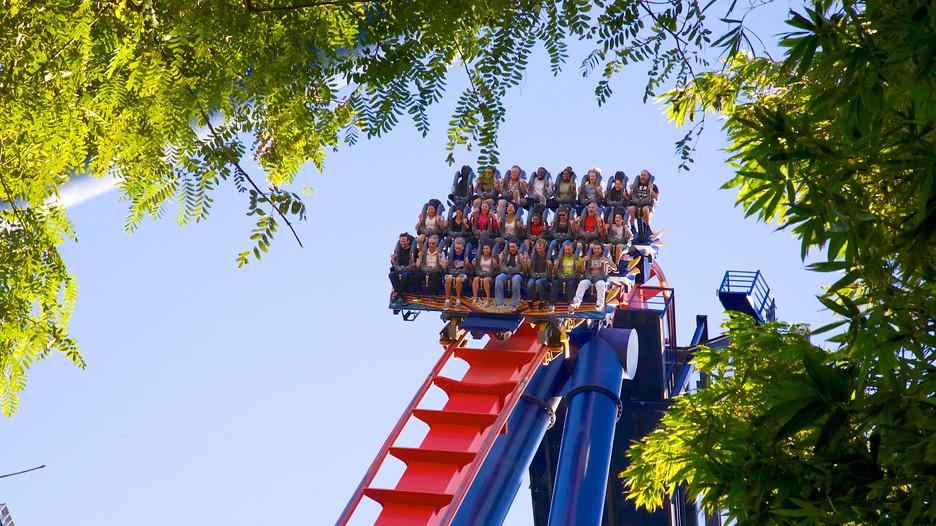 Busch Gardens In Tampa Florida Expedia