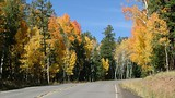 Flagstaff - USA - Flagstaff Convention and Visitors Bureau