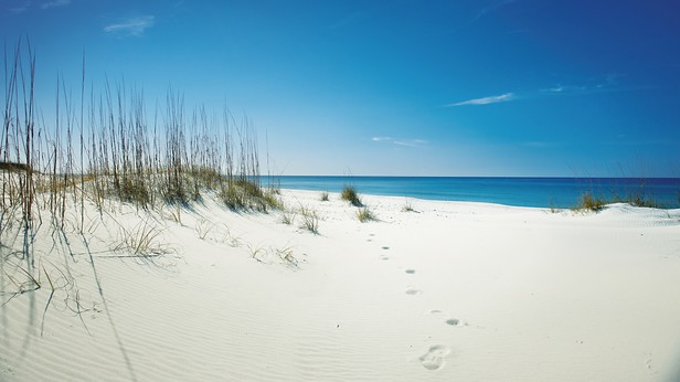 Panama city beach usa panama city beach cvb tdc