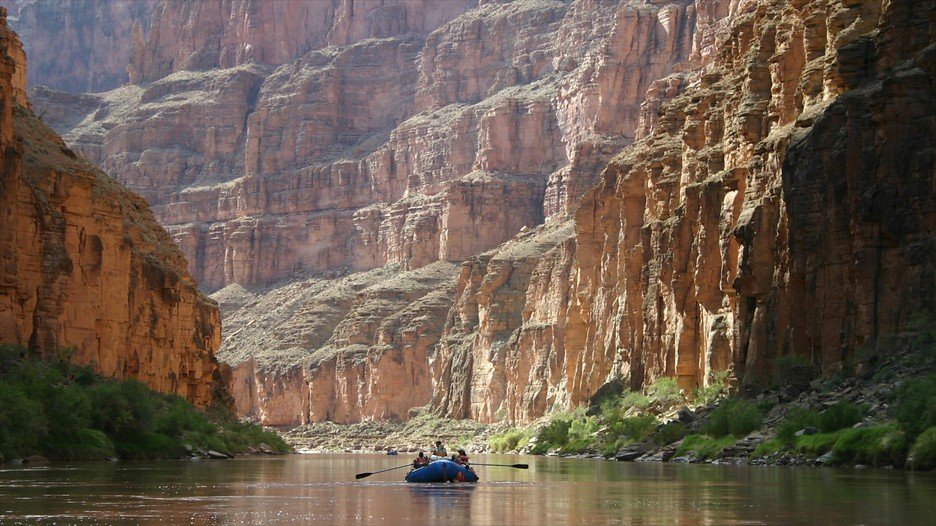 Search Grand Canyon Vacations