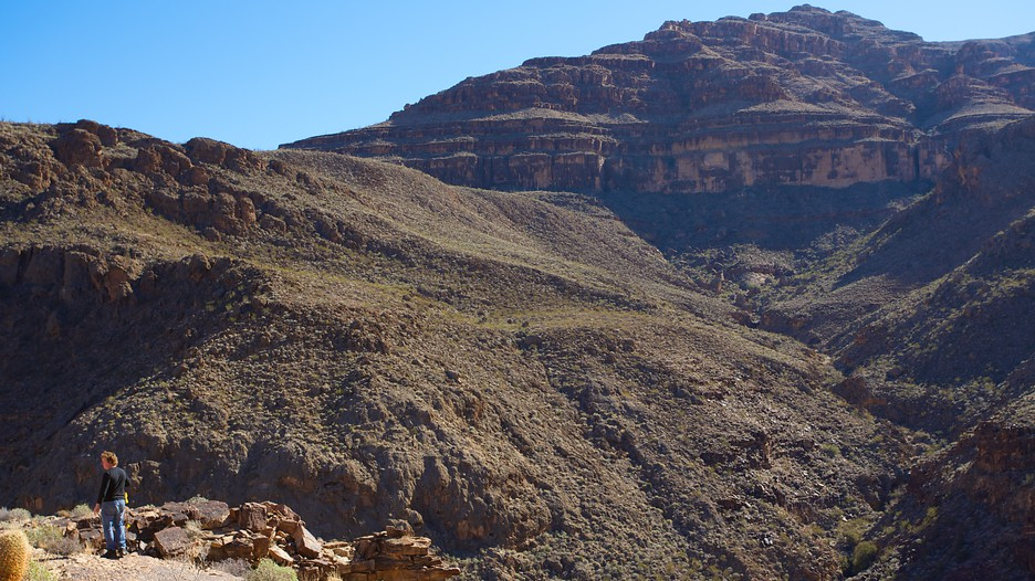 Grand Canyon Vacation Packages Book Cheap Vacations
