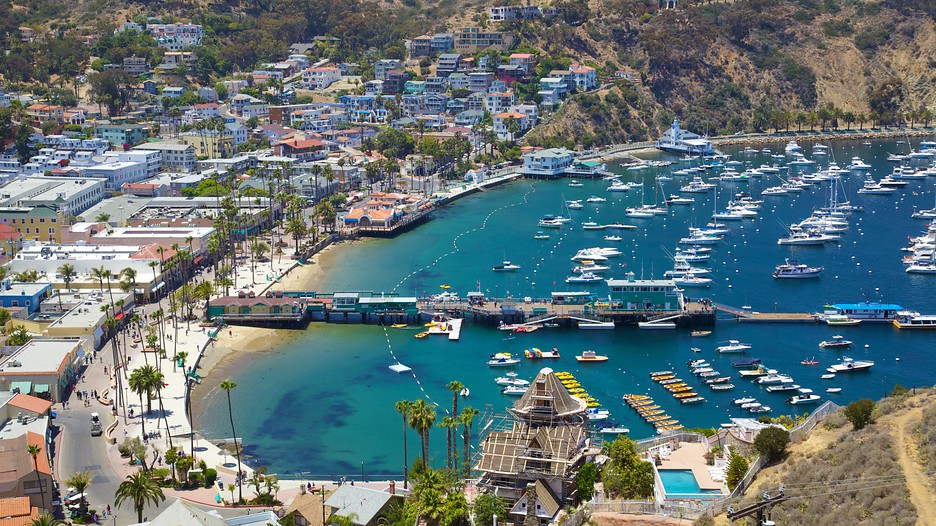 Tours From Long Beach To Catalina Island