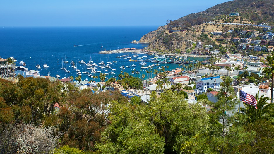 Download this Catalina Island Usa Tourism Media picture