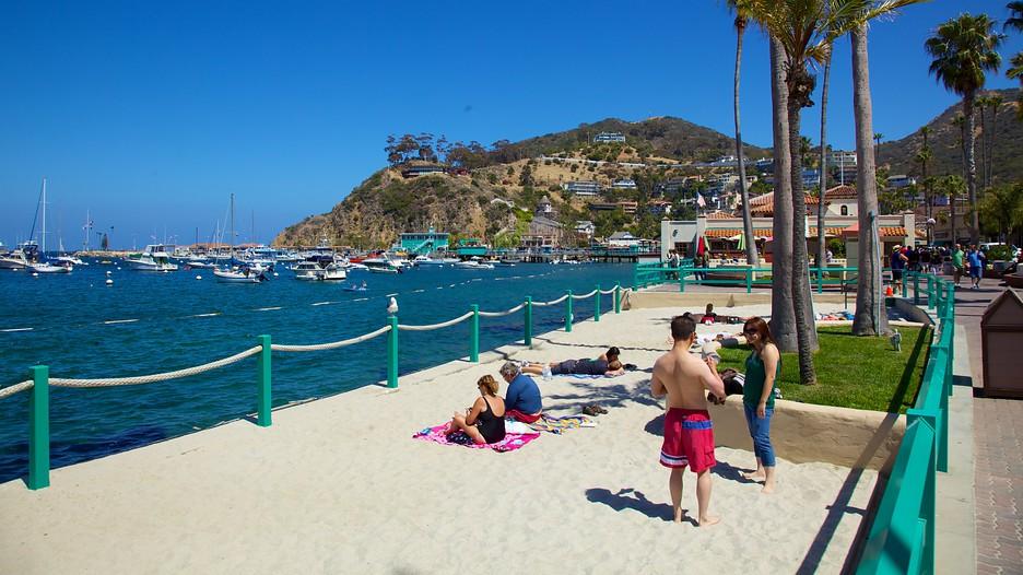 Cheap Hotels In Catalina Island Ca