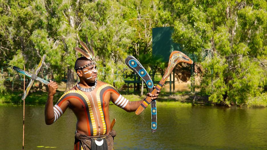 Download this Tjapukai Aboriginal Cultural Park Cairns Tourism Media picture