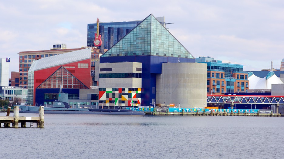 National Aquarium In Baltimore In Baltimore Maryland Expedia