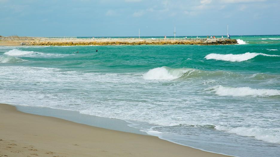 Hotels Near Fort Lauderdale Beach Park