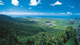 Skyrail Rainforest Cableway - Cairns - Tourism Queensland