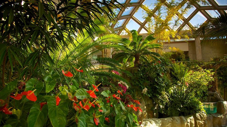 Denver Botanic Gardens Denver Colorado Attraction