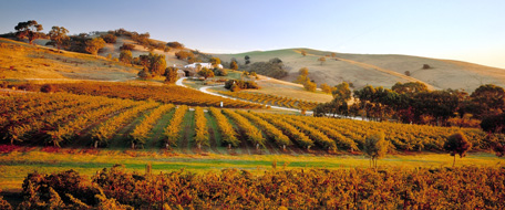 Barossa Valley Hotels