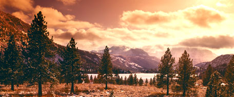Mammoth Lakes Ski Area hotels