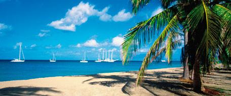 Nevis Hotels