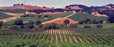 Sonoma Valley Hotels