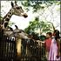 Jungle Breakfast with Wildlife