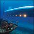 Atlantis Submarine Adventure