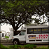 New Orleans City and Cemetery Sightseeing Tour