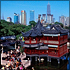 Best of Shanghai Day Tour (Private Tour)