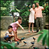 Jurong Bird Park Admission