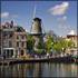 Combo Special: Full-Day North & South Holland Tour