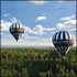 Orlando Balloon Rides: 1-Hour Ride with Sparkling Wine Toast