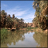 Sahara Tours: Full-Day Tour to Taroudant and Tiout with Lunch