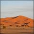 Sahara Tours: Pre-Saharan 4x4 Desert Safari to Assaka, Including Lunch
