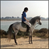 Sahara Tours: Horse Riding Tour via the Royal Palace to the River Souss
