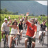 Full-Day Bike Tour with Wine Tasting in the Wachau Valley